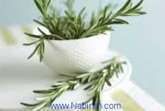 چند گیاه خوب برای تقویت حافظه