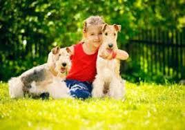 نگهداری حیوانات برای کودکان خطرناک است