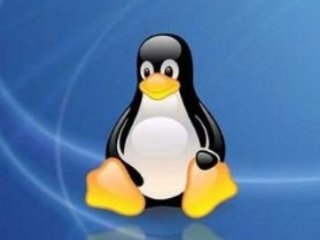 سرمایه گذاری  شرکت IBM روی سيستم عاملLinux 